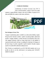 COMPANY PROFILE.docx