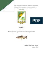 Ferma Piscicola Specializata in Cresterea Pastravului