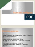Tumori-maligne