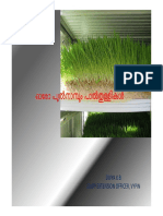 Fodder Cultivation