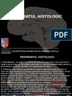 Histo_LP1