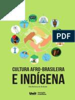 00_Cultura Afro Indigena