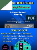 Perspektif Dalam Sosiolodawdawdgi - Tugas