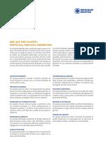 contenido-lecho-fluidizado.pdf