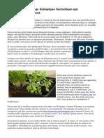 Conseils de jardinage biologique fantastique qui fonctionnent vraiment