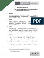 Directiva Registro de Informacion en El SEACE