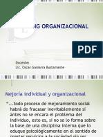 Coaching Organizacional-semana 15
