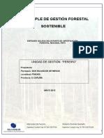 Plan gestion PINUS.doc