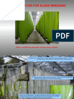 Specification Bio Reactor