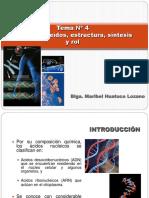 4. Acidos Nucleicos Sintesis y Rol
