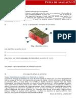 Cn7 Ficha Avaliacao 5
