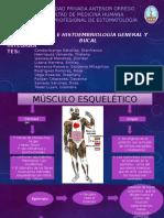 tejido-muscular-expoooo.pptx