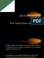 Bio Energetic As