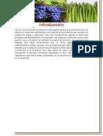 Desarrollo Agroexportador ICA