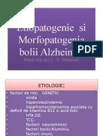 B. Alzheimer v.merean