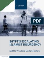 Egypt's Escalating Islamist Insurgency