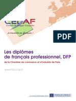 Brochure DFP 2010 Vl