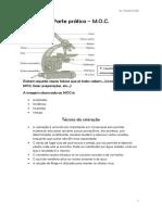resumoi-130421114704-phpapp02