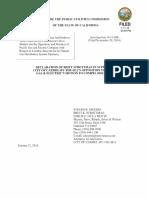 Declaration of Britt Strottman Carmel 01-11-16