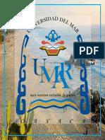 PlandeMarketing-PuertoEscondido Primera Parte