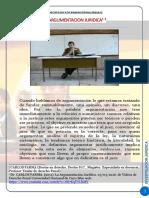 La Argumentacion Juridica Por Carlos Parma