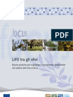 LIFE tra gli olivi