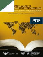 Instrument Os Internacional Es
