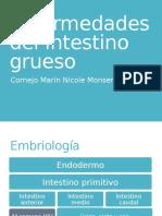 Enfermedades Del Intestino Grueso