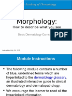 Morphology Skin