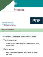 237210830-Nervous-System.ppt