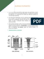 GALERIAS FILTRANTES 1.1.doc