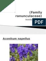 Aconitum napellus