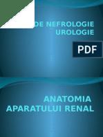 Curs Nefro - Urologie