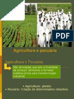 Agricultura e Pecuária.pdf