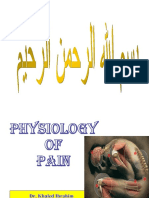 pain-100306152548-phpapp02