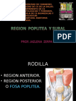Region Poplitea y Sural Prof. Jzerpa