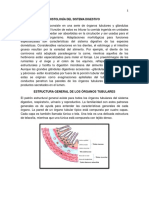 Documento Sistema Digestivo