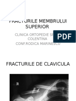 02 Fracturile MS