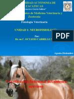 Unidad i. Neurofisiología (Fisiología Veterinaria). (2)