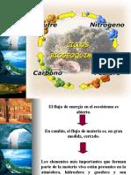 ECOLOGIA Ciclos Geoquimicos,Etc