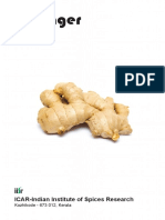 ginger.pdf