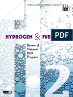 Hydrogen and Fuel Cells Review Natl R D Programs 9264108831 2