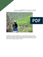 Curiozitati Din Peru
