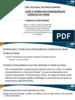 a11_direito_constitucional_slide01(1).pdf
