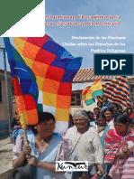 Declaracion ONU Quechua Castellano 2015