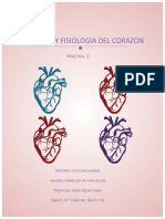 Practica1 de Fisiologia Anima corazon