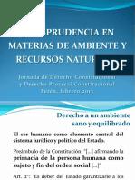 Jurisprudencia en Materias de Ambiente y Recursos Naturales Por Julio Cordón