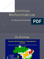 dominios_morfoclimaticos (1).pps