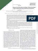 Regulation of root morphogenesis in arbusucular micorrhizae