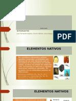1 Elementos Nativos